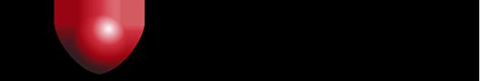 Pyrogenesis